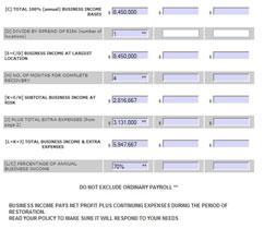 Worksheets Business Interruption Insurance Worksheet business interruption insurance worksheet abitlikethis income worksheets